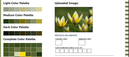 Image to Color Palette Generator