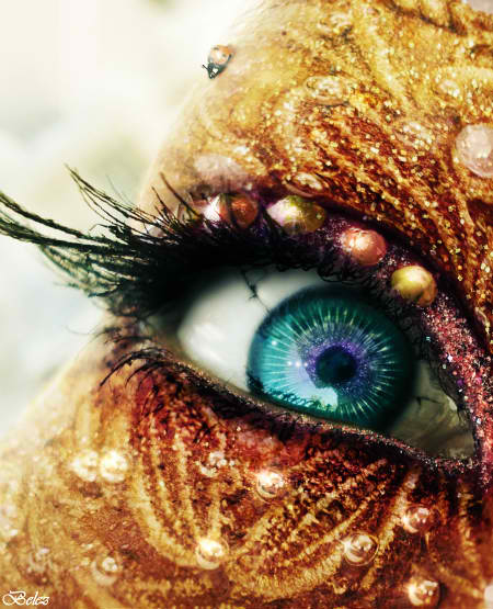 The Golden Fairy's Eye