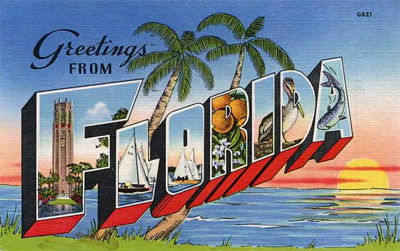 Greetings from Florida - Large Letter Postcard