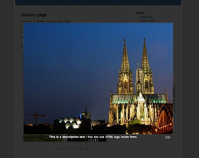 NextGEN WordPress Gallery Plugin