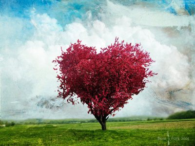 20 Rejuvenating Tree Photo Manipulations for Inspiration