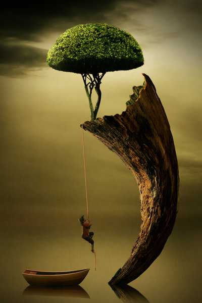 Tree Photo Manipulation