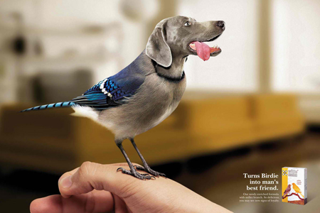 Witte Molen: Animal Advertisements