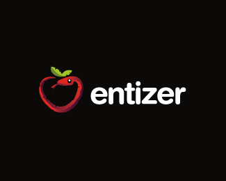 Entizer Logo Design