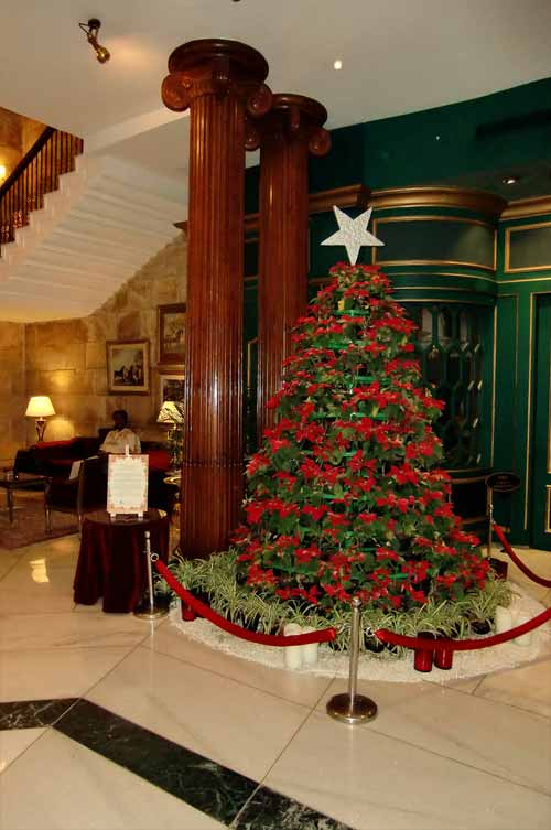 30 pictures of decorated christmas tree designs Christmas tree decorating ideas philippines