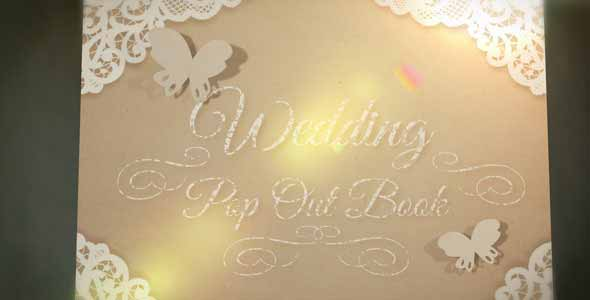 Wedding Pop Out Book