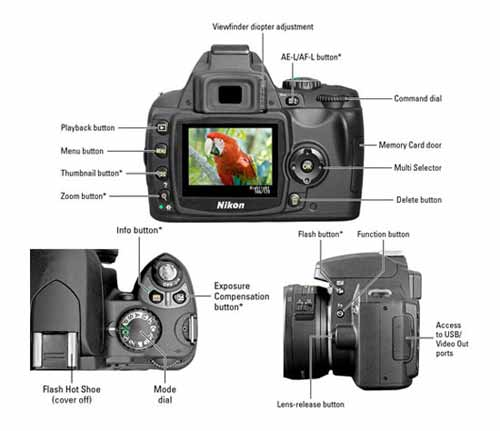 Nikon D40/D40X Cheat Sheet