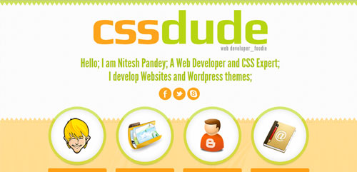 CSS Dude - Web and UI Developer