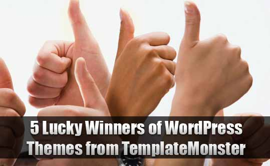 5 Lucky Winners of WordPress Themes from TemplateMonster