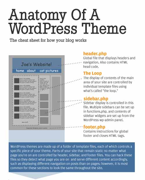 Anatomy of a WordPress Theme Cheat Sheet
