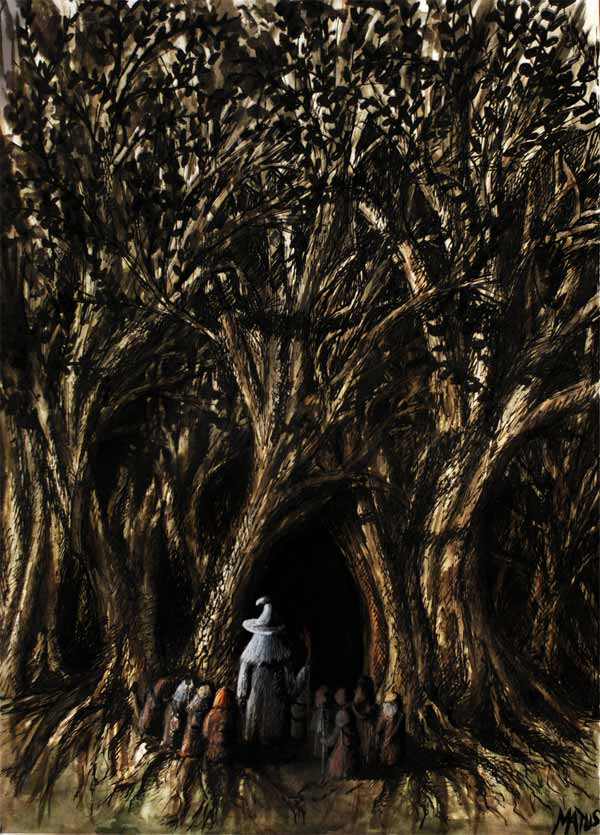 Entrance to Mirkwood