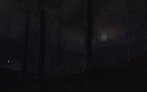 Mirkwood at Night