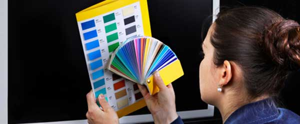 Essential Principles of Website Color Scheming