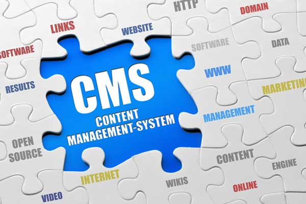 What is CMS and how it used?