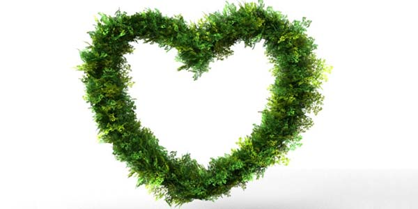 Heart Bush Decoration