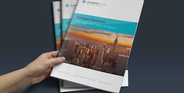 Corporate Business Brochure Report