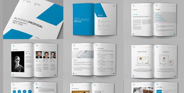 Clean Proposal & Brief Template