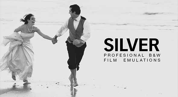 Silver - 28 B&W Film Emulations