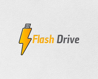 Flash Drive - Thunder Logo Designs